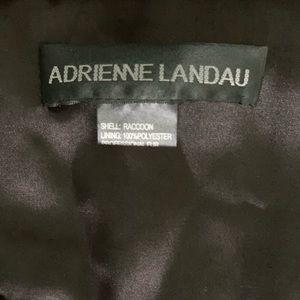 Andrienne landau scarf